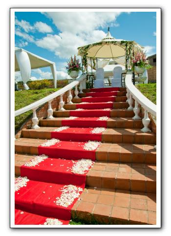 mariage chapiteau tapis rouge espace les colonnades salle de r ception salle de mariage. Black Bedroom Furniture Sets. Home Design Ideas