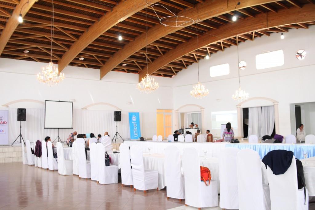 Groupe de travail-Atelier CI SRMNIA-N UNICEF Madagascar-espace-Les Colonnades-Antananarivo-Janvier-2020 (2)