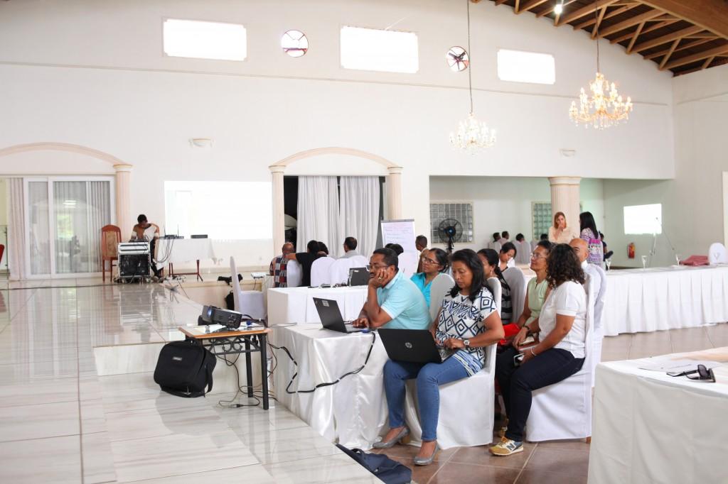 Groupe de travail-Atelier CI SRMNIA-N UNICEF Madagascar-espace-Les Colonnades-Antananarivo-Janvier-2020 (3)